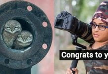 This 10-Yr-Old From Jalandhar Won The Young Wildlife Photographer Of The Year 2018 Award